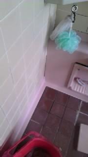 風呂場ビフォー